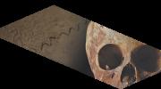 Fókuszban a múmiák - meghívó (részl.)